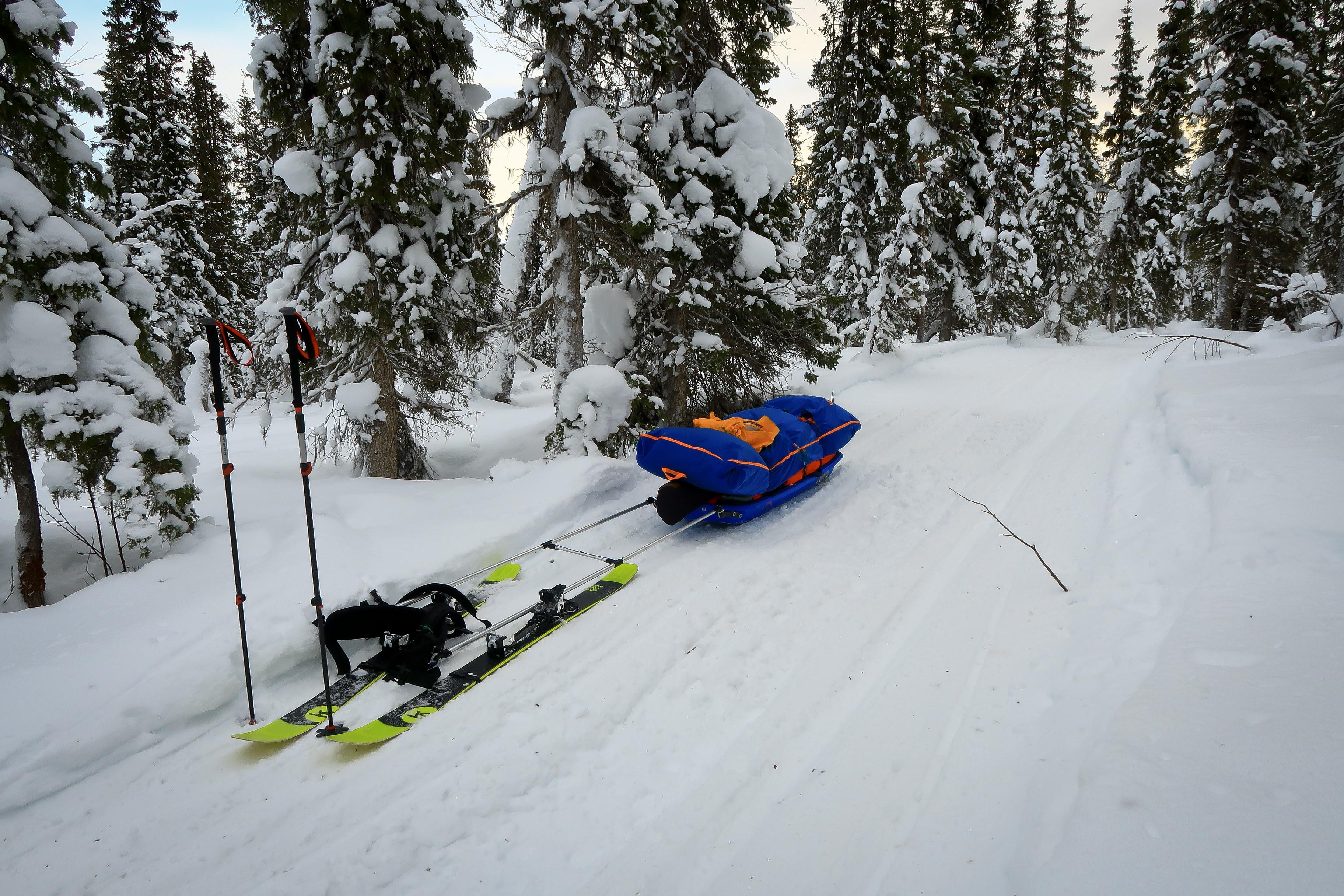 Big blue pulk behind some unsuitable skis