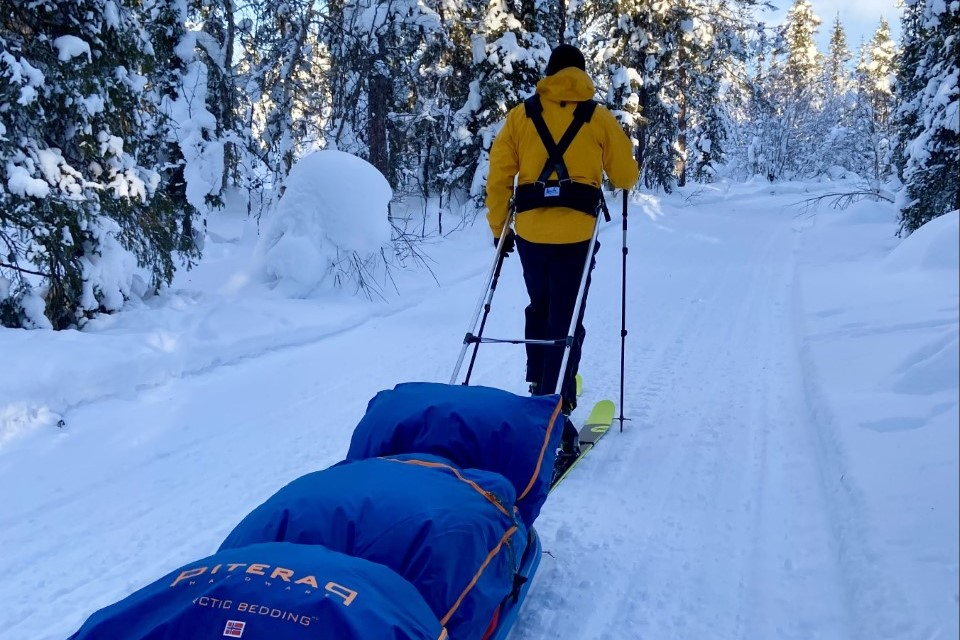 Zander pulling his pulk through the snow covered forest