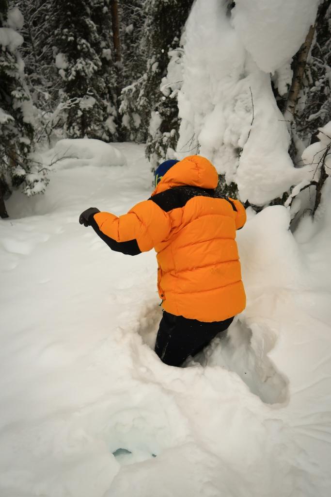Struggeling in Deep Snow - The Gentleman Explorer